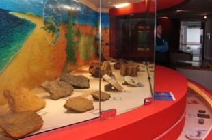 Atividades práticas nas visitas e exposições de minerais, rochas e fósseis.