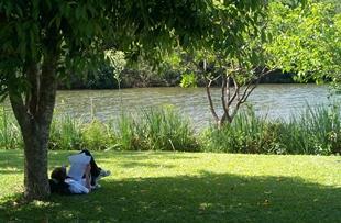 Um campus interligado com a natureza. Na Unisinos, em São Leopoldo, meio ambiente e alunos são integrados em um só espaço.