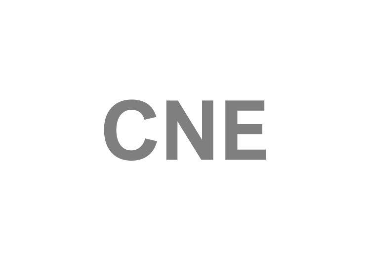 cne-pmg.png